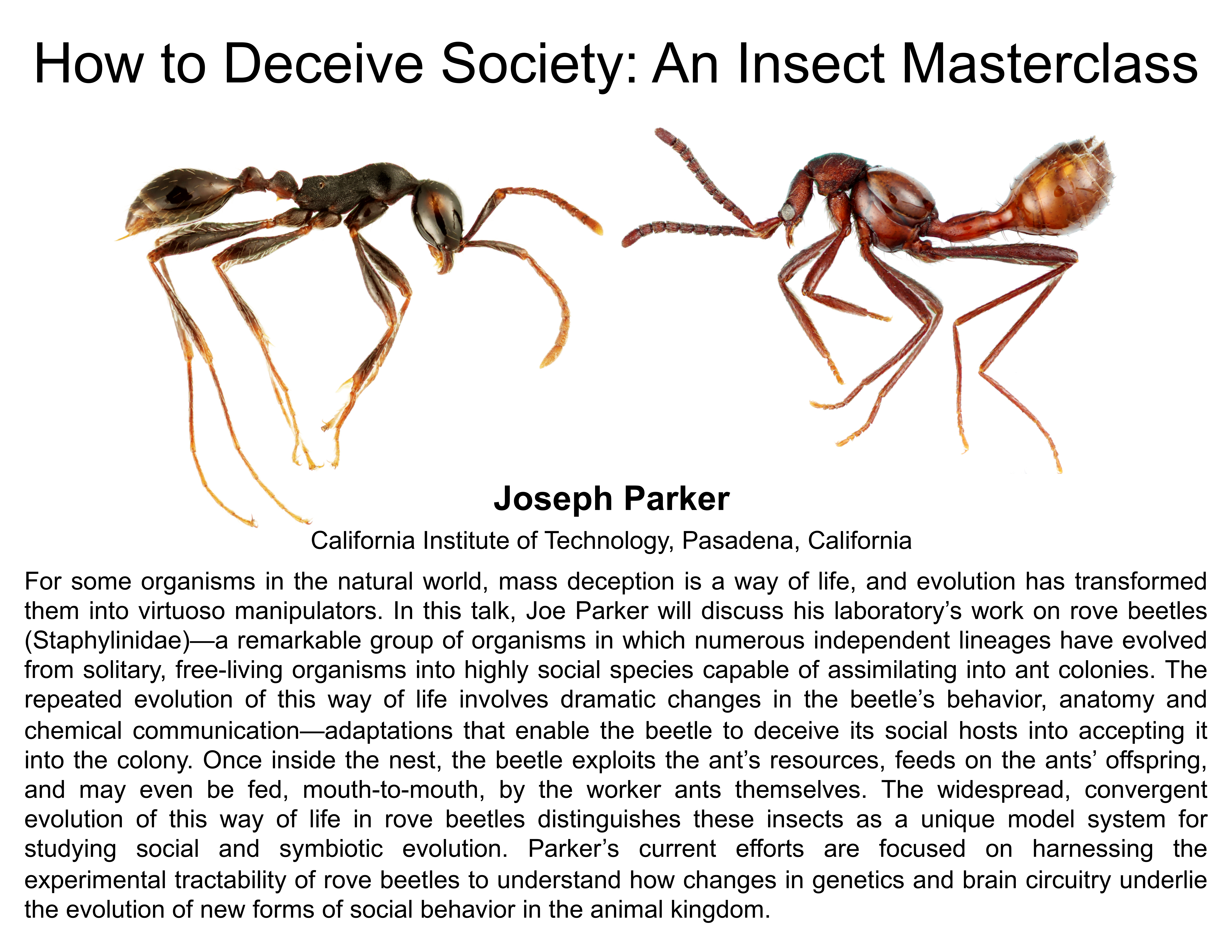 Plenary: How to Deceive Society: An Insect Masterclass