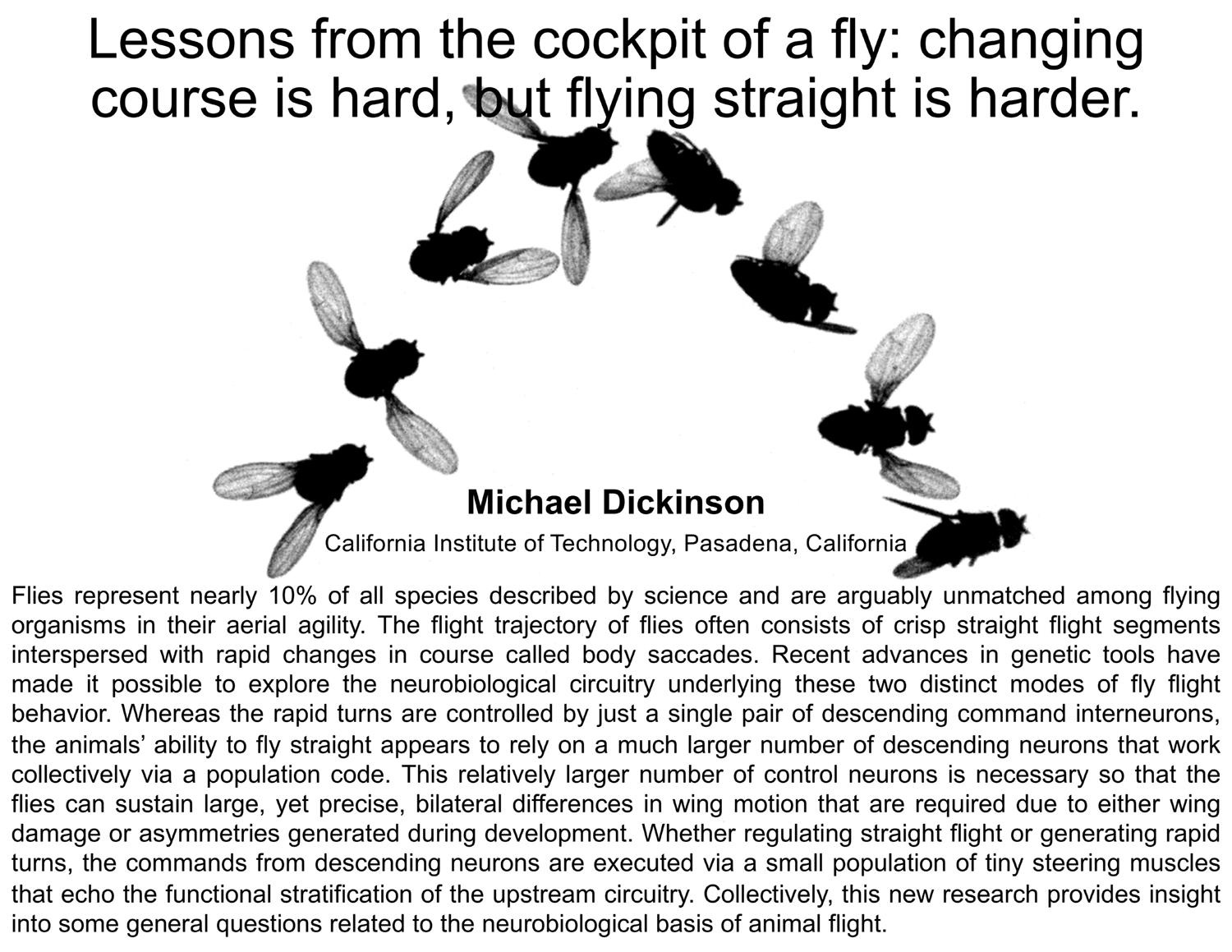 Plenary: Lessons from the cockpit of a fly: changing course is hard, but flying straight is harder.